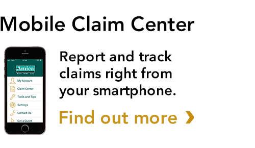 Report A Claim Amica